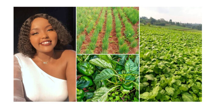 Pretty lady succeeds big in farming, shows off her plantation (photos)