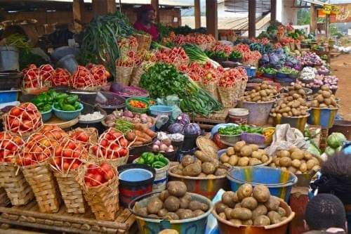 Igbo can feed themselves - South East group reacts to food blockade