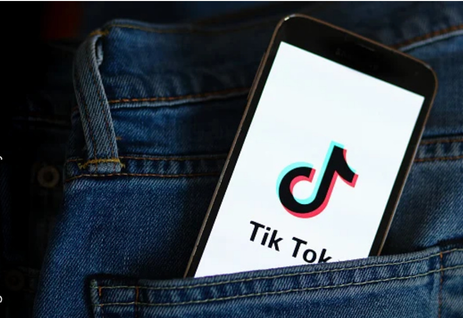 TikTok: How to do a Fake Follower Audit – use this tool to check for bots!