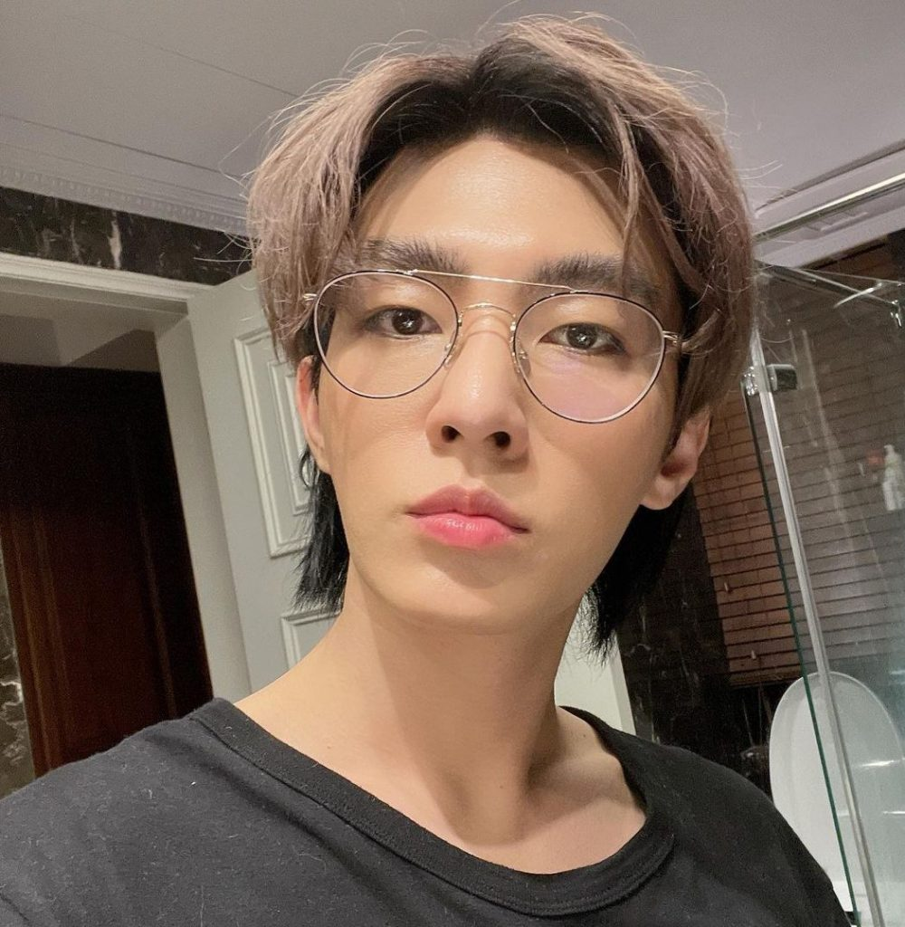 Aaron Yan Biography: Early Life, Artistic Career, Family and Net Worth